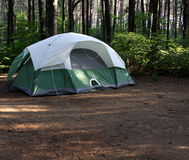 Green Tent in the Forest Stock Images