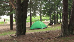 A green tent on the nature. 4K. stock footage
