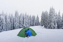 Green tent in winter mountains. Green tent and tourist against the backdrop of snowy pine tree forest. Amazing winter landscape. Tourists camp in high mountains royalty free stock images