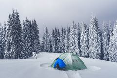 Green tent in winter mountains. Green tent and tourist against the backdrop of snowy pine tree forest. Amazing winter landscape. Tourists camp in high mountains royalty free stock photos