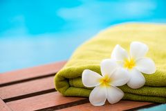 Green terry towel on a chaise longue close up and two flowers. Frangipani stock image
