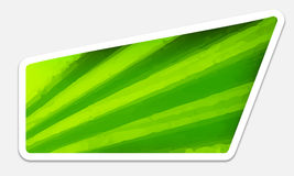Green text box Royalty Free Stock Images