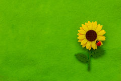 Green textile background with sunflower Royalty Free Stock Photography