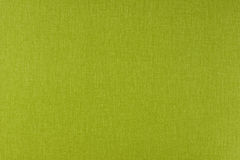 Green texture background Stock Image