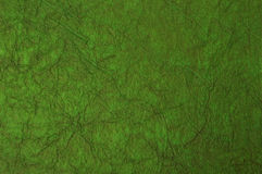 Green texture background Royalty Free Stock Photography