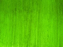 Green Texture Background Woody Stock Photography