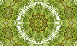 Green Texture Patterns Background Wallpaper Royalty Free Stock Image
