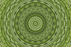 Green Texture Patterns Background Wallpaper Royalty Free Stock Photo