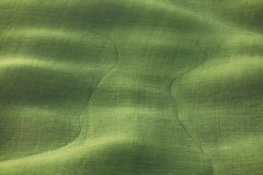 Green textured background from a field in Tuscany with fresh grass Royalty Free Stock Photos