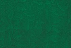 Green textured holly background. Stock Photos