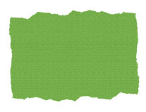 Green Textured Paper Ripped. Illustration Isolated on White royalty free illustration