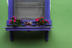Green textured wall with window and flowers. Green textured wall with blue window detail, window ledge and flowers Royalty Free Stock Images