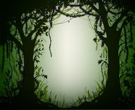 Green thicket rain-forest, deep fairy forest silhouette,. Jungle shadows Stock Photography