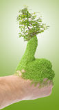 Green thumb royalty free stock photo