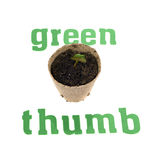 Green Thumb Royalty Free Stock Image