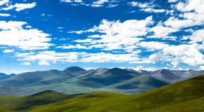 Green Tibet landscape on sunny day with color filter Stock Photography