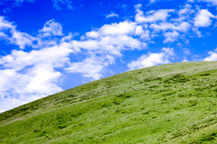 Green Tibet landscape on sunny day with color filter Stock Images