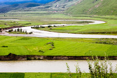 Green Tibet landscape on sunny day with color filter Royalty Free Stock Images