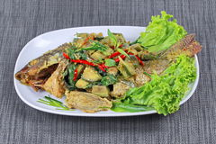 Green tilapia fish curry in coconut milk is popular Thai cuisine Royalty Free Stock Photo