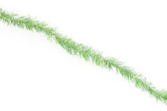 Green tinsel line Stock Photography