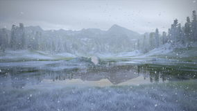 Green to Frozen Lake stock footage