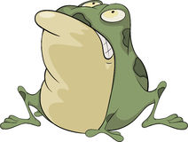 The green toad . Cartoon Royalty Free Stock Image