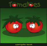 green tomater Arkivfoton