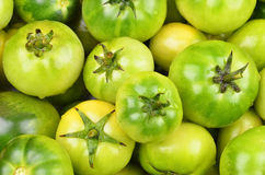 Green tomato, close up Royalty Free Stock Photography