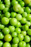 Green tomatoes. On a marketplace. Brigth colors, rich contrast Stock Photography