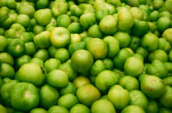 Green tomatoes Royalty Free Stock Image