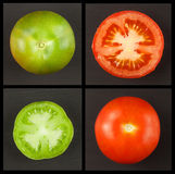 Green tomatoes collage. Agriculture concept. Sales of agricultural crops. Stock Image