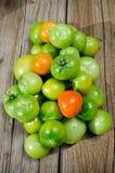 Green tomatoes Royalty Free Stock Photo