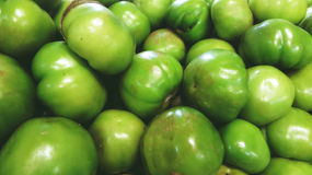 Green tomatoes. Photograph of some green tomatoes Stock Photos