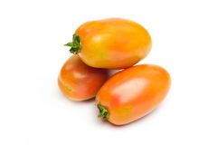 Green tomatoes for salad. Called san marzano Stock Photography