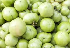 Green tomatoes in a supermarket Royalty Free Stock Image