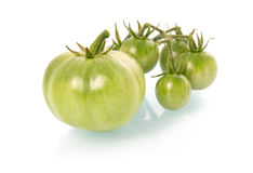 Green tomatoes vegetables isolated Royalty Free Stock Photo
