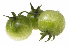 Green tomatoes on white. Isolated, wet green tomatoes on white royalty free stock photography