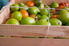 Green tomatoes in wood box Royalty Free Stock Image
