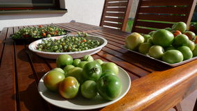 Green tomatos. On a wooden table Royalty Free Stock Photo