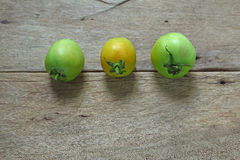 Green tomatos  on wood table Stock Image