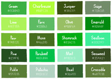 Green Tone Color Shade Background with Code and Name Stock Photography