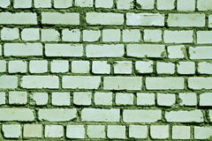 Green toned rough brick wall pattern. Royalty Free Stock Photography