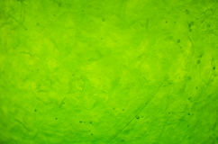 Green toned texture abstract background Stock Photography
