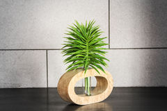 Green top tree with tube Stock Image
