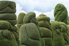 Green topiary in Tulcan Ecuador. Cypress evergreen topiary in Tulcan Ecuador Royalty Free Stock Photo