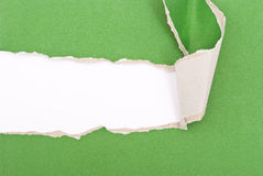 Green torn paper. Texture for design stock photography