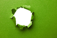 Green torn paper Stock Photography