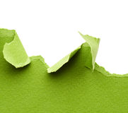 Green torn paper Royalty Free Stock Image