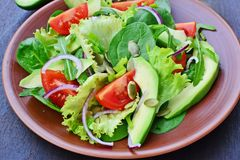 Green tossed salad with leafy vegetables. Arugula, baby spinach, avocado, cherry tomatoes and pumpkin seeds royalty free stock photography