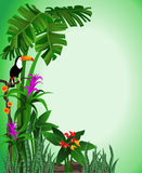 Green Toucan Background. Green tropical background with flowers and a toucan Stock Photo
